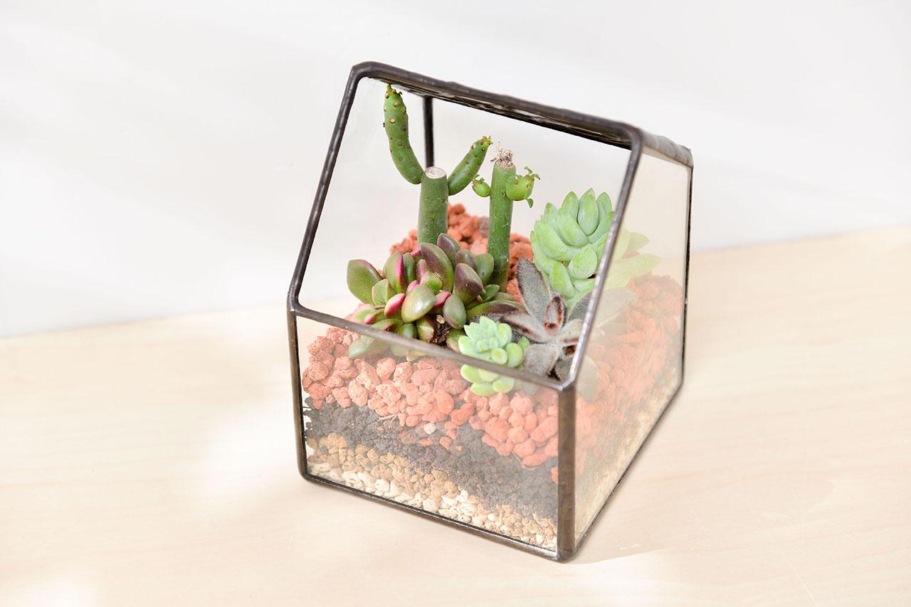 玻璃材質的特殊花藝盆,讓開幕送禮多出新選擇