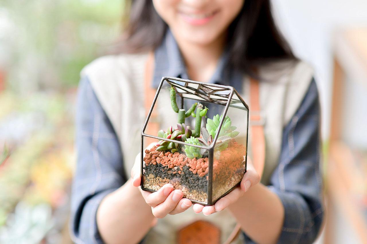 鑲嵌玻璃盆栽