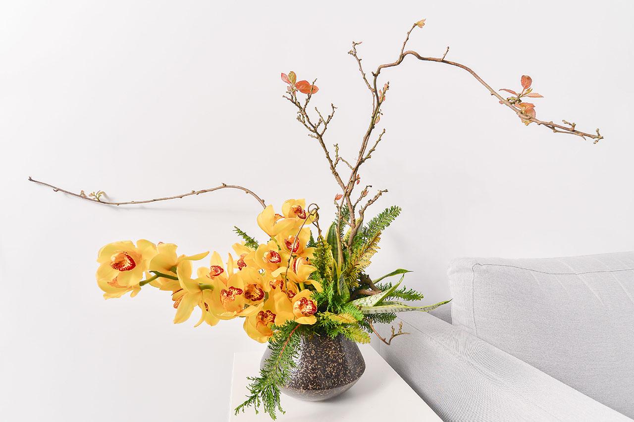 黃金蘭花鑽石盆栽 1