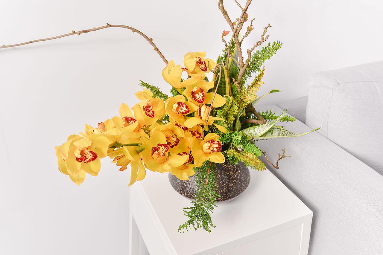 黃金蘭花鑽石盆栽放室內
