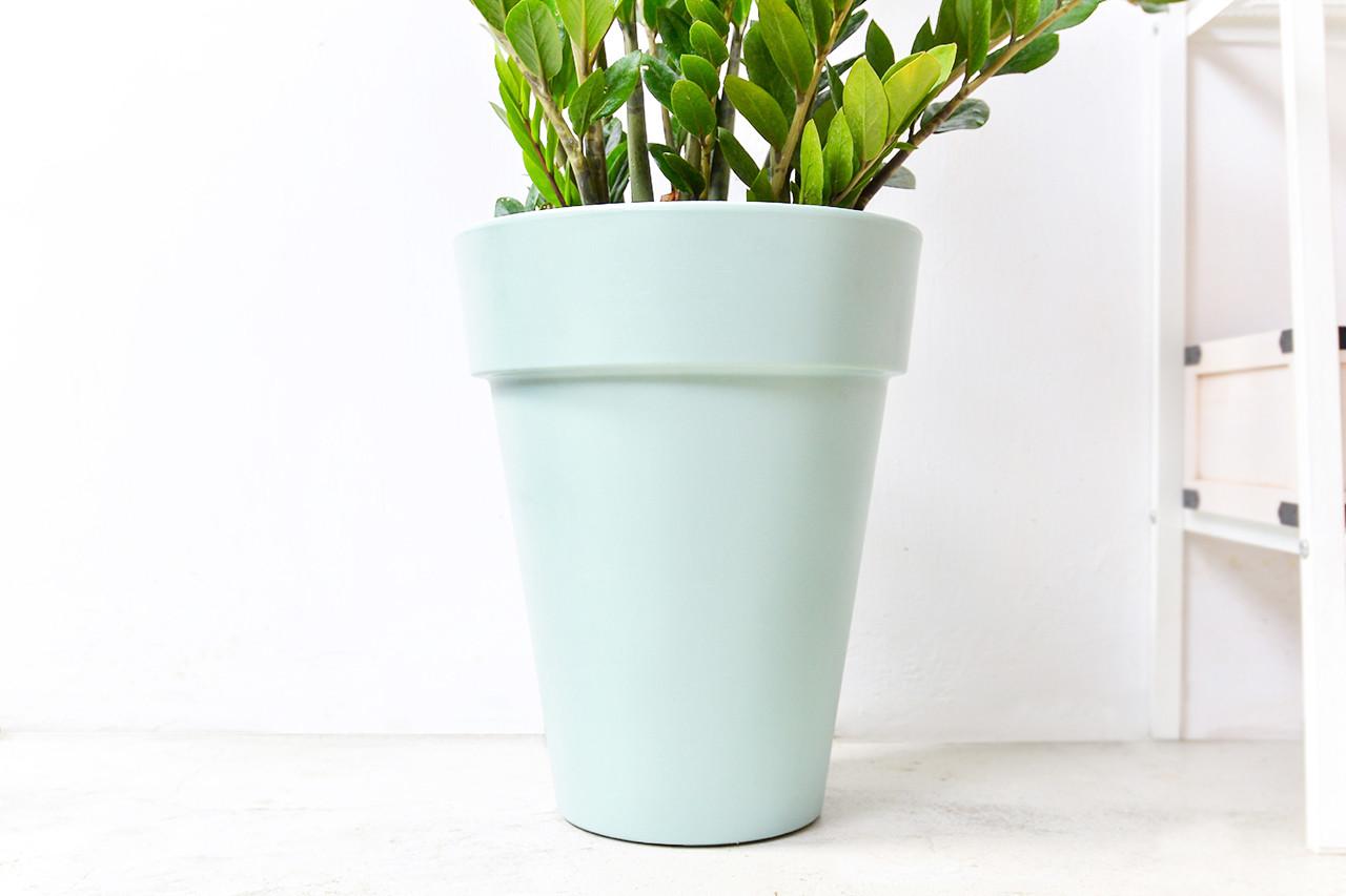 金錢樹-湖水綠落地盆栽 4