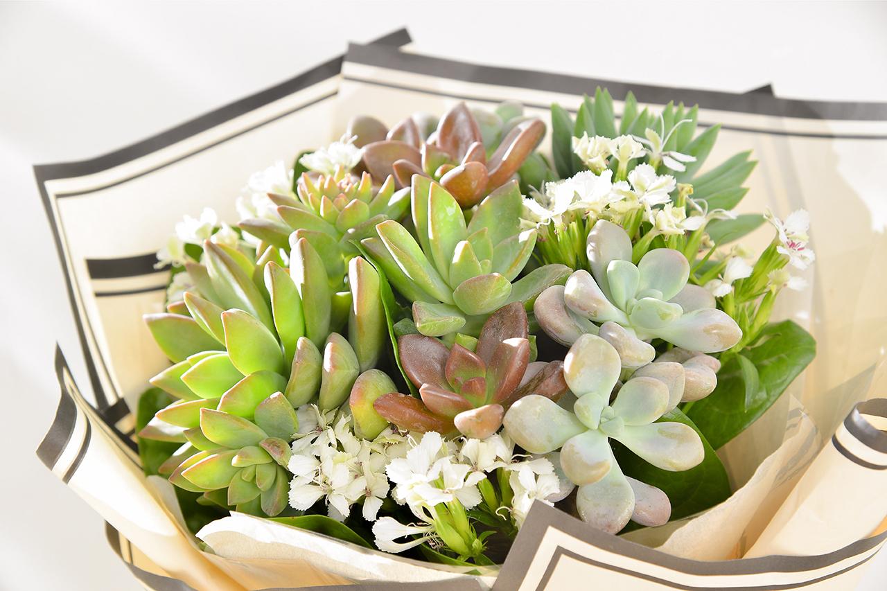 多肉花束 – 白色浪漫 米黃花束(小) 10