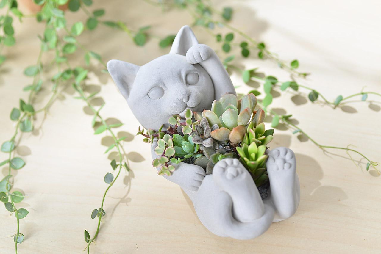 招財貓 - 招貴人組盆 1
