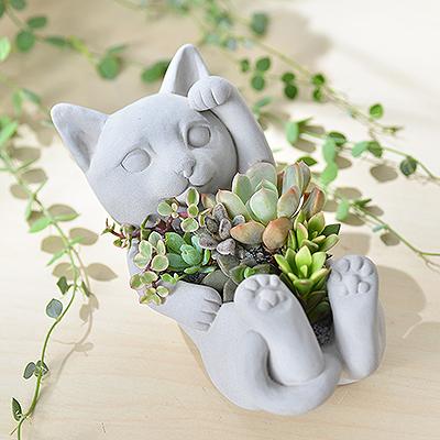 招財貓 - 招貴人組盆