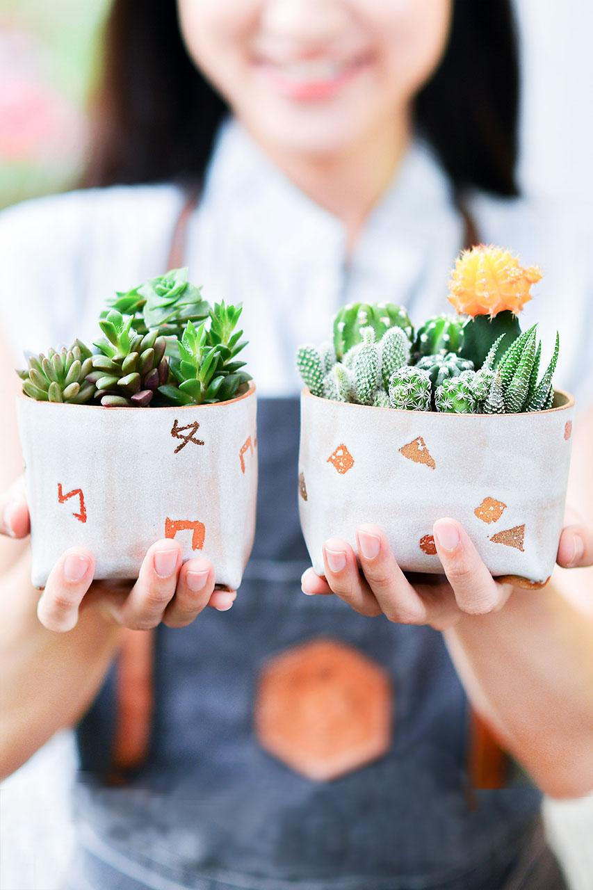 溫暖小陶器 – 好事成雙組 米口陶小學生盆 直式