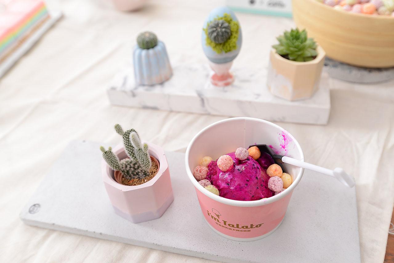 [ 門市活動 ] 彩虹多肉植物園 2火龍果冰淇淋