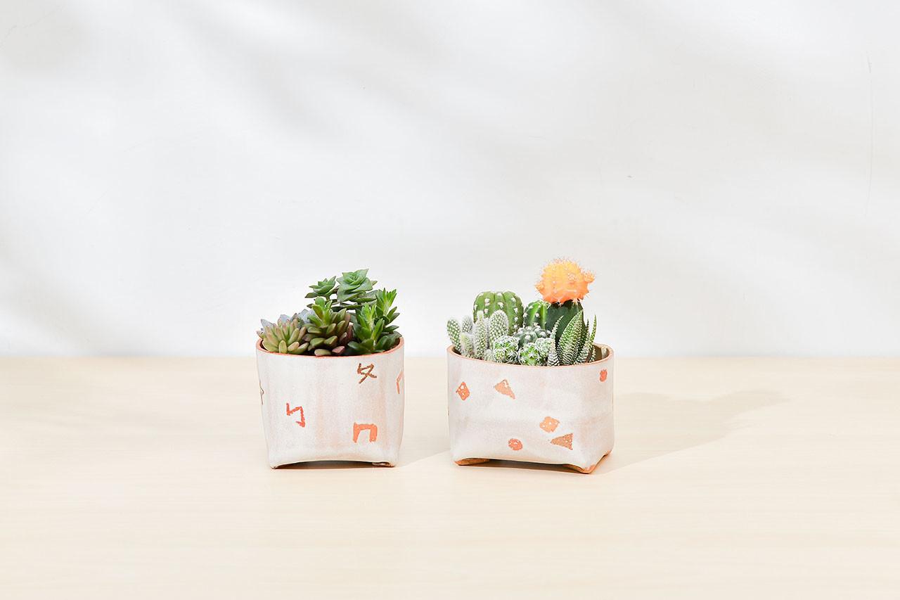 幾何與注音的送禮盆栽