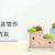 [ 水泥課程 ] 幾何水泥盆栽製作 & 多肉植栽 1