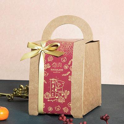 新春禮盒包裝