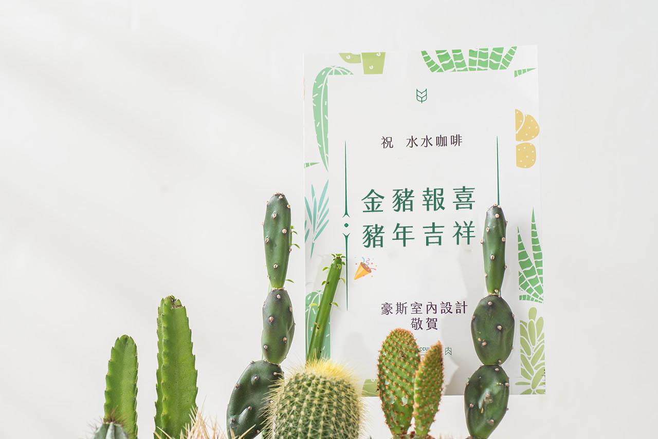 最新的盆栽推薦!網路花店送苗栗 8