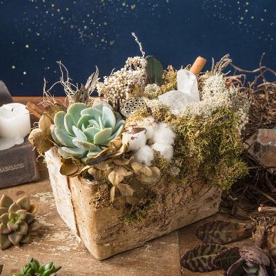 聖石大釜 - 聖誕桌花 1