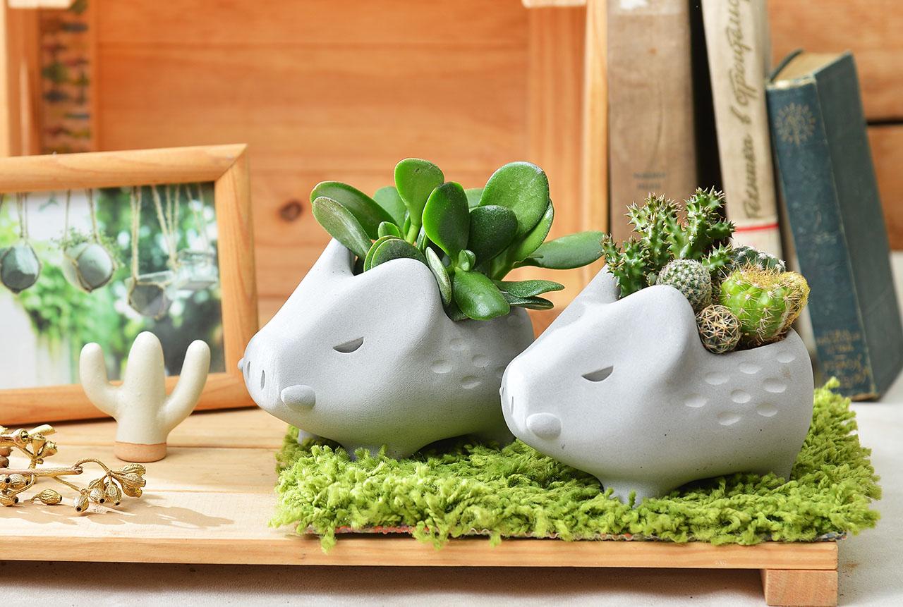 可愛小豬造型禮物