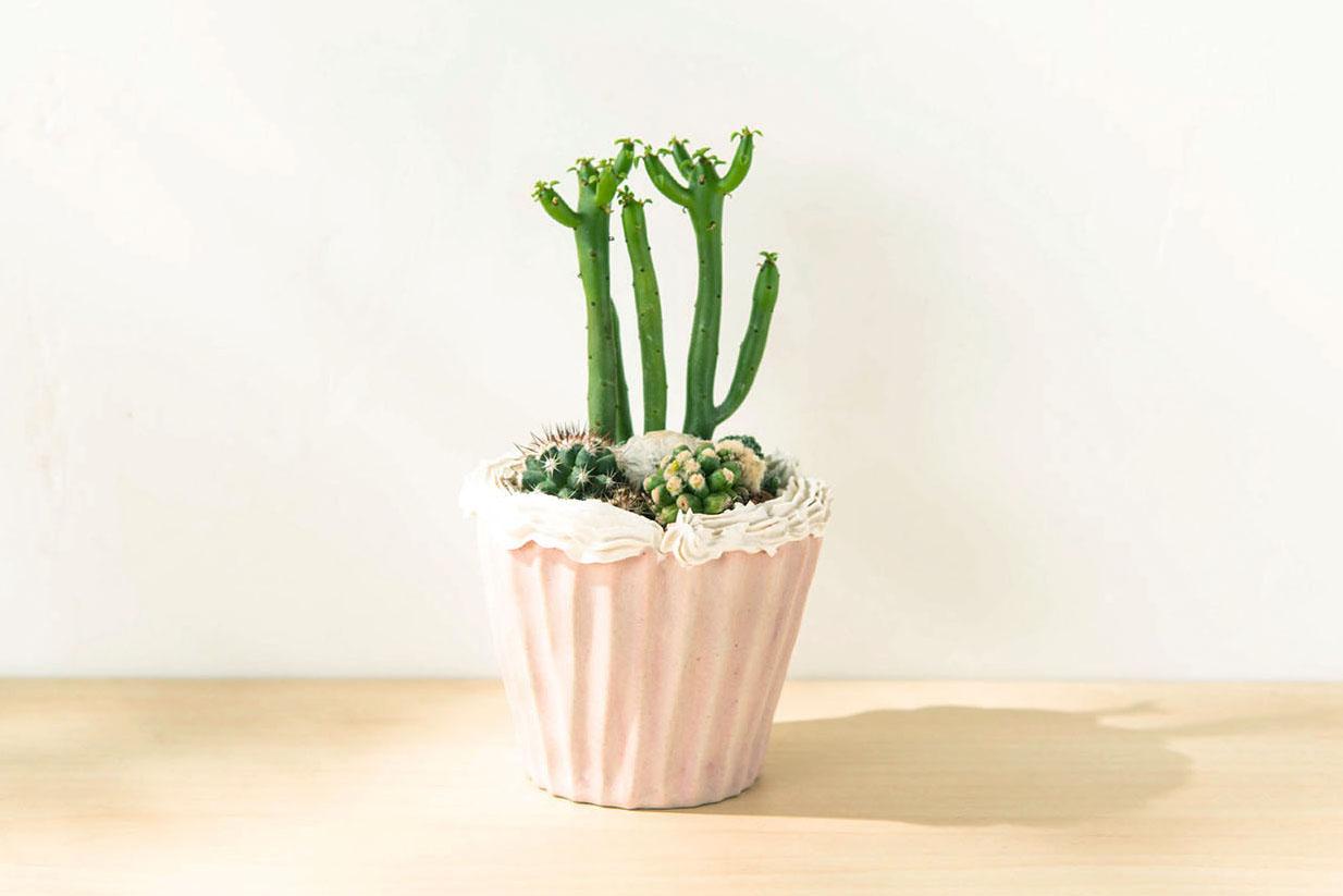 仙氣蛋糕盆