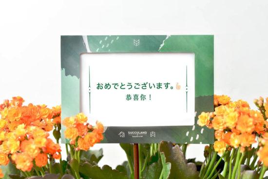 恭喜你!日語祝賀詞