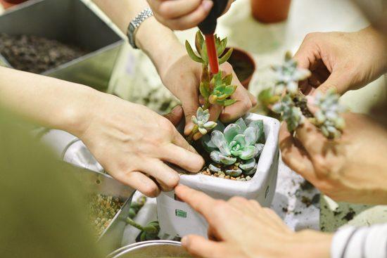 土裡的好菌:髒了反而更快樂 teambuilding活動案例 24 30