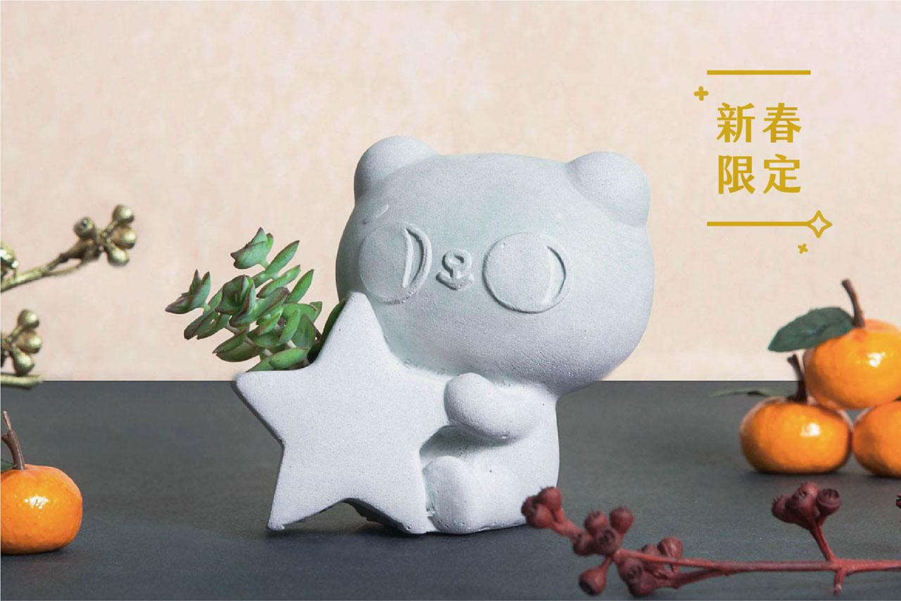 爽爽貓 多肉盆 7