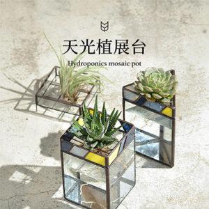 [ 鑲嵌玻璃課程 ] 天光植展台(台北教室) 1