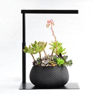 ONF 桌上型多肉植物燈 - 黑色(純燈具) 1