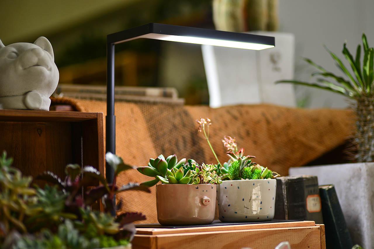 全光譜植物燈