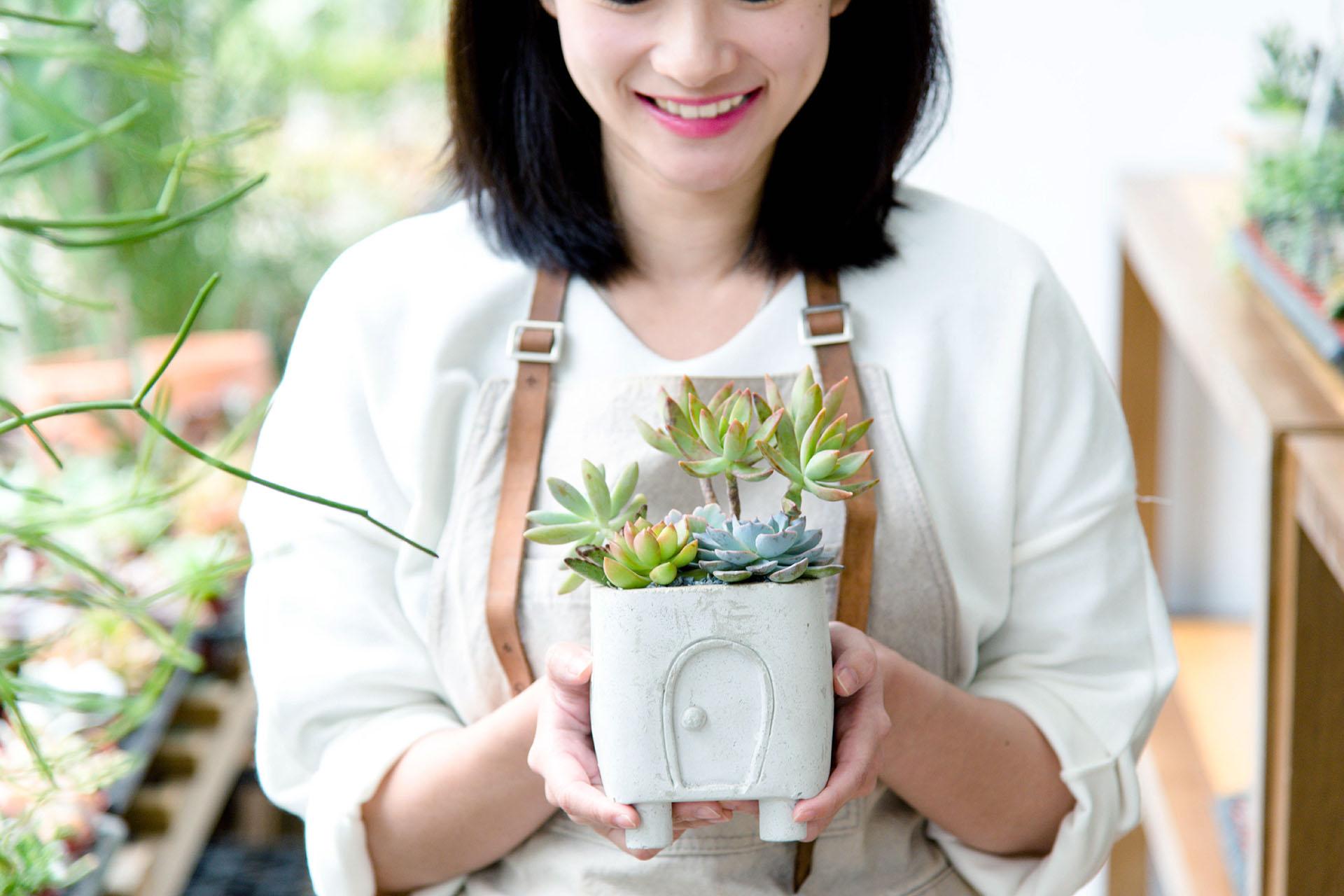 多肉植物課程台北
