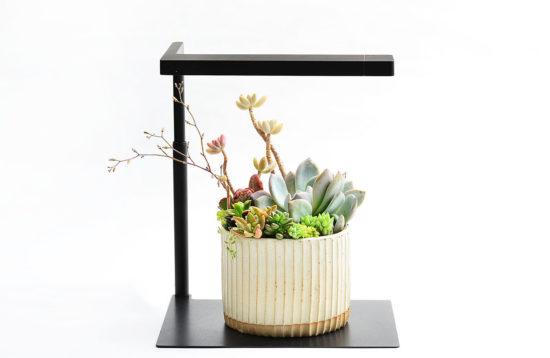 工業風質感植物燈