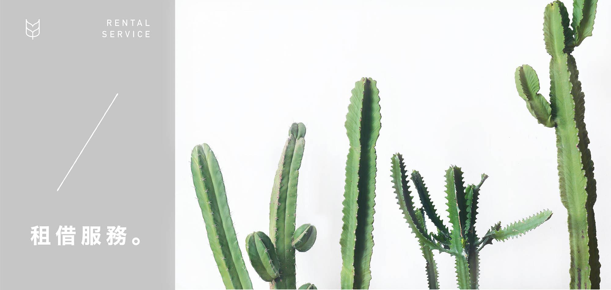 植物租借服務
