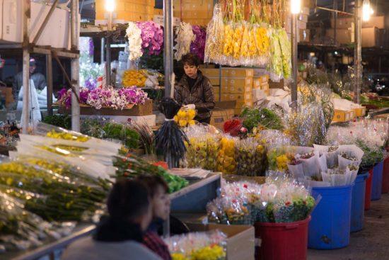 廣巴花市的蘭花