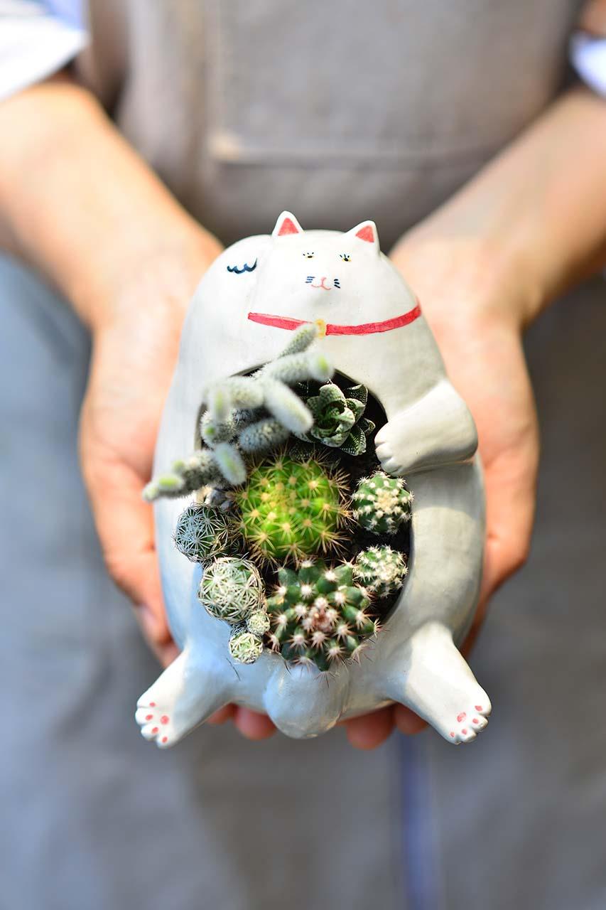 躺著賺招財貓 - 經典白貓 1