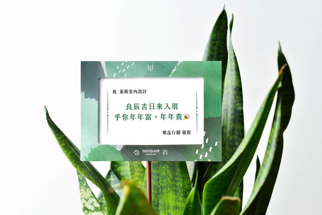 最多讚的七種仙人掌盆栽 0606 祝賀詞與祝賀卡片推薦 喬遷篇03