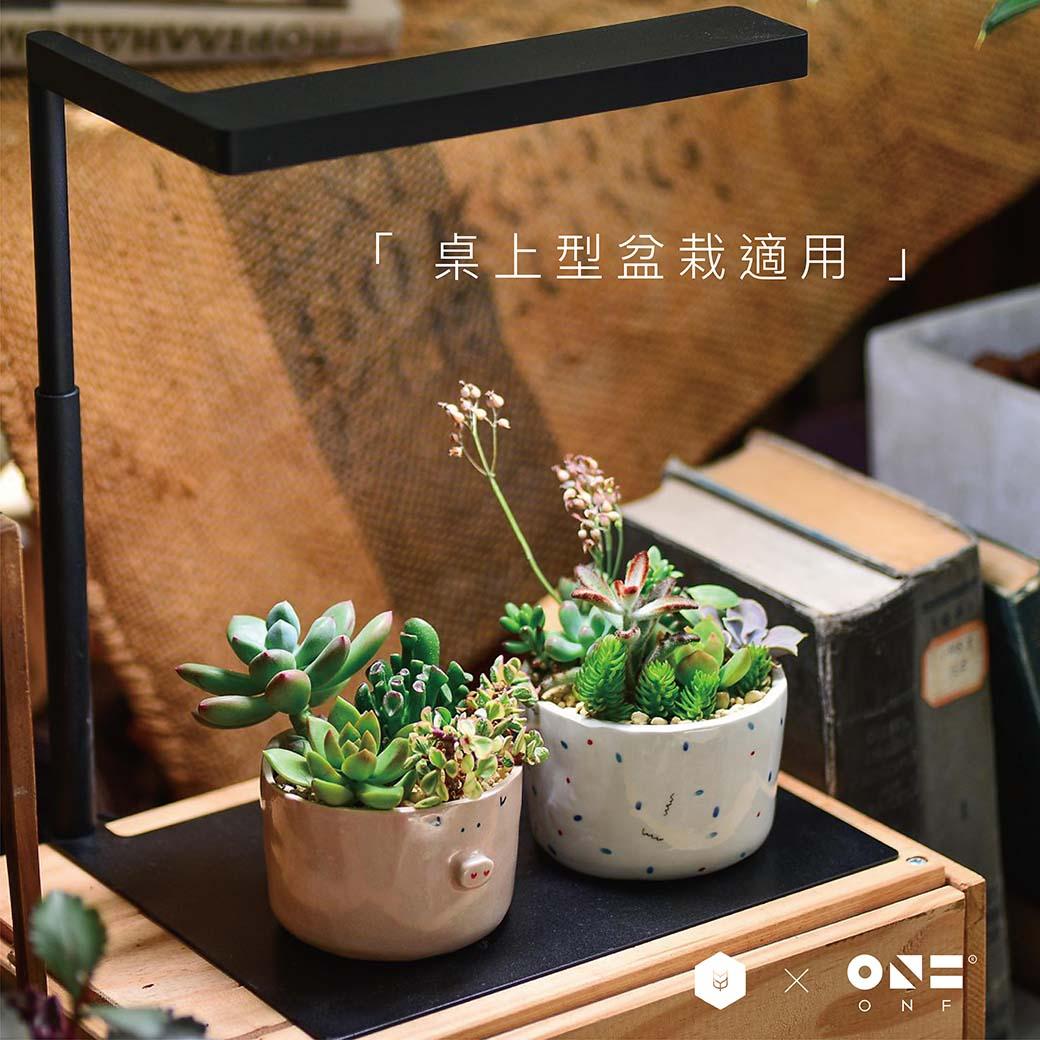 桌上型植物燈