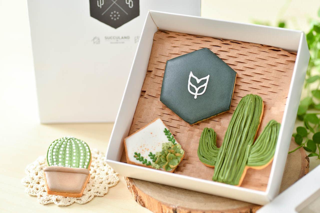 家庭日-植物手作日 0612 多肉植物翻糖課@台北有肉 包裝特寫