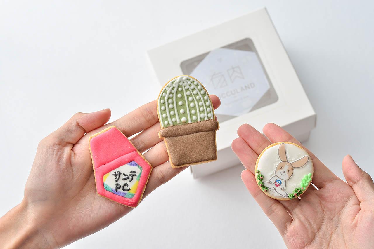[ 造型設計 ] 自在多肉糖霜餅乾