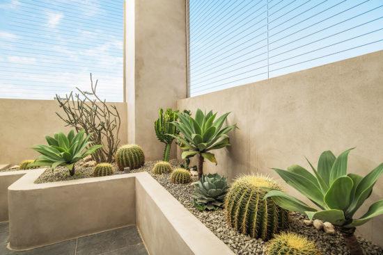 陽台植物佈置造景 - 宜蘭謝公館 24