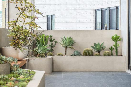 陽台植物造景佈置