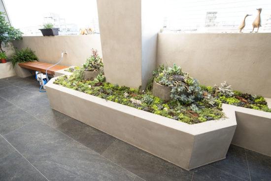 清水模植物造景