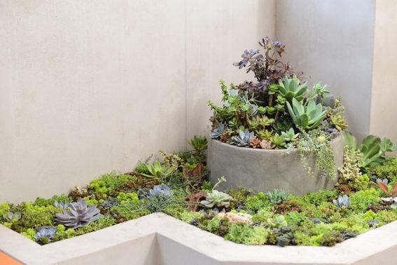 陽台花園整理小技巧