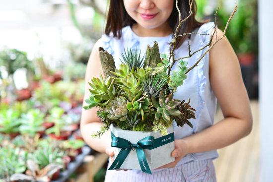 熱門推薦!新北市的開幕盆栽在這裡! 0712 多肉花束與多肉盆花2020 284