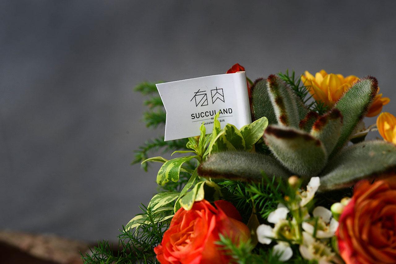 [ 多肉花藝 ] 萬聖迷你桌花 0829 萬聖節南瓜花藝課 021