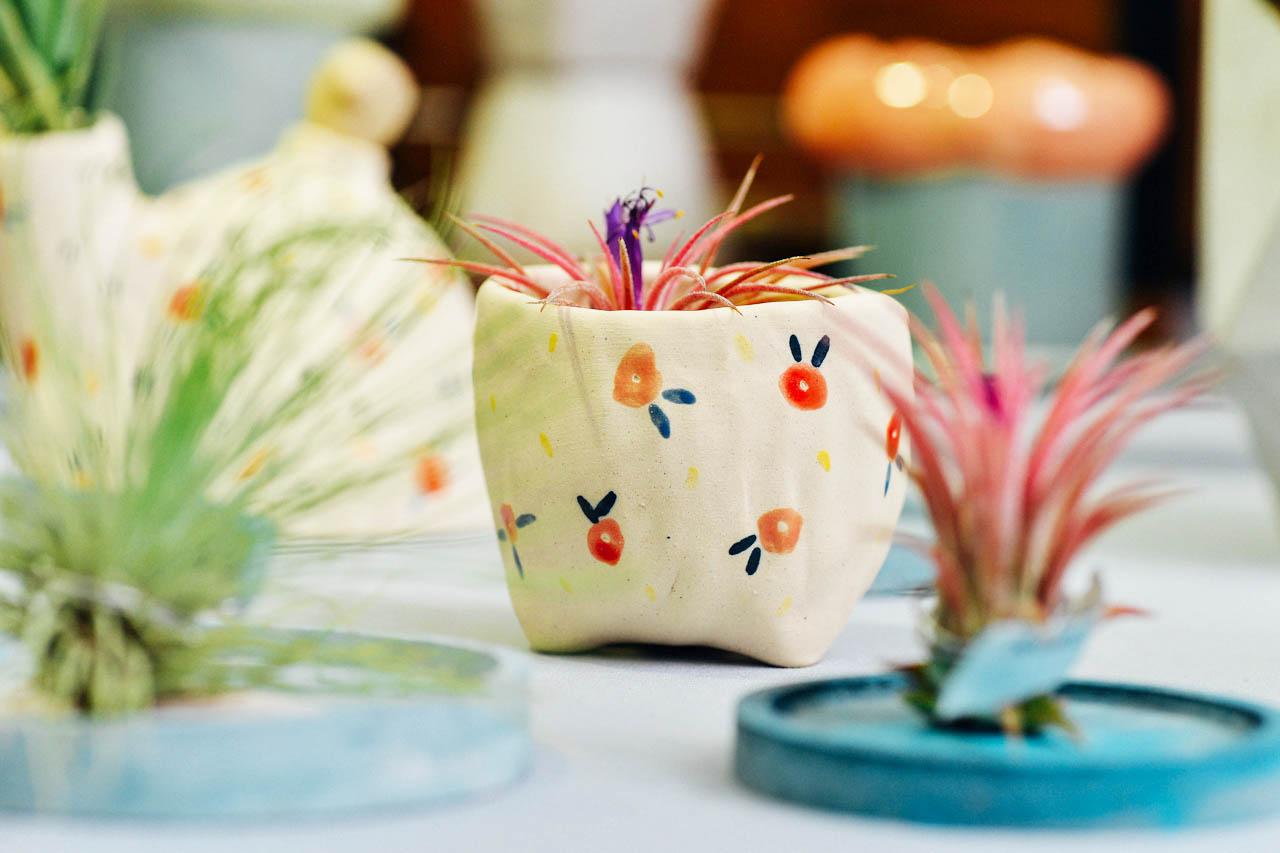 空氣鳳梨與小花盆