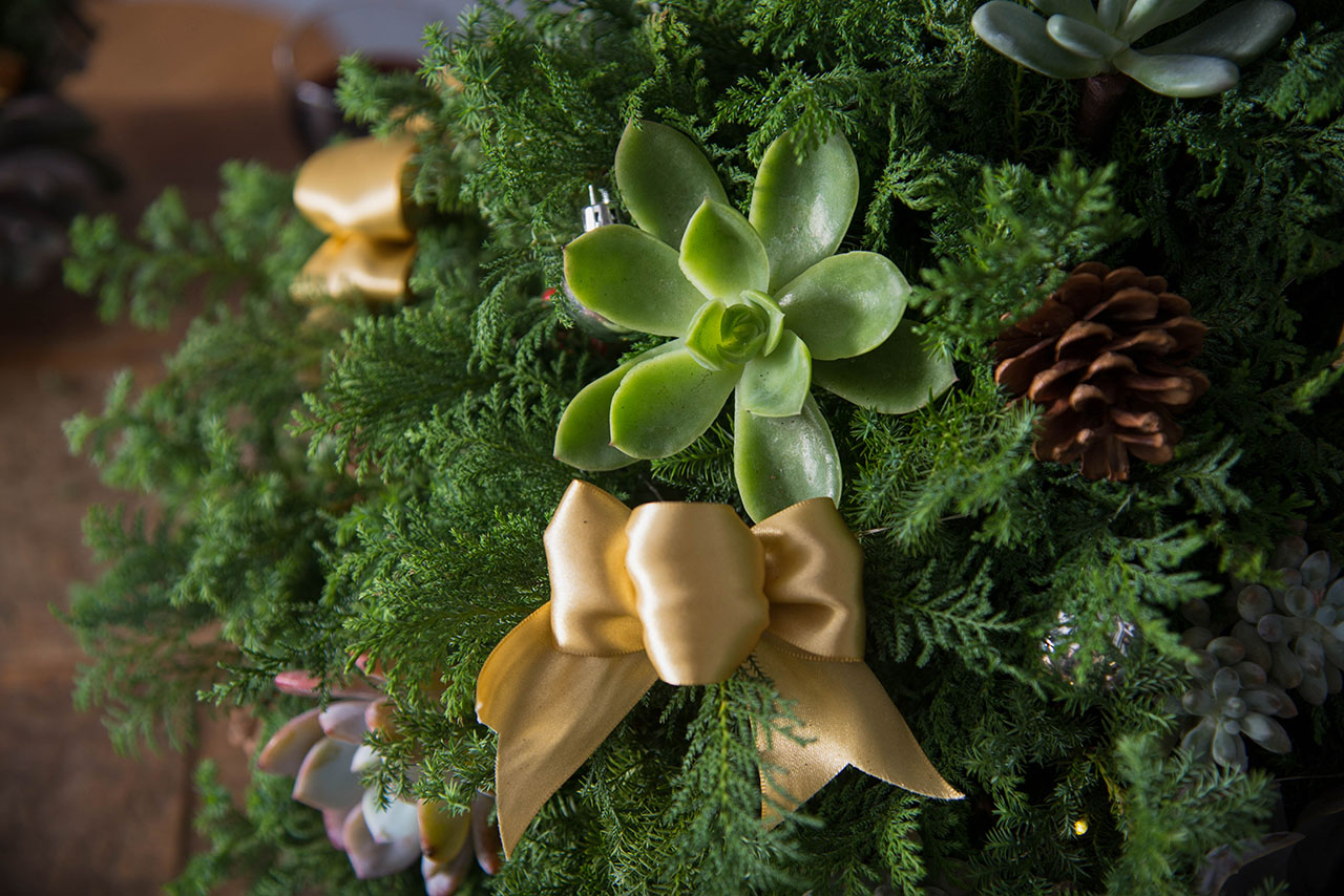 succulent on christmas tree