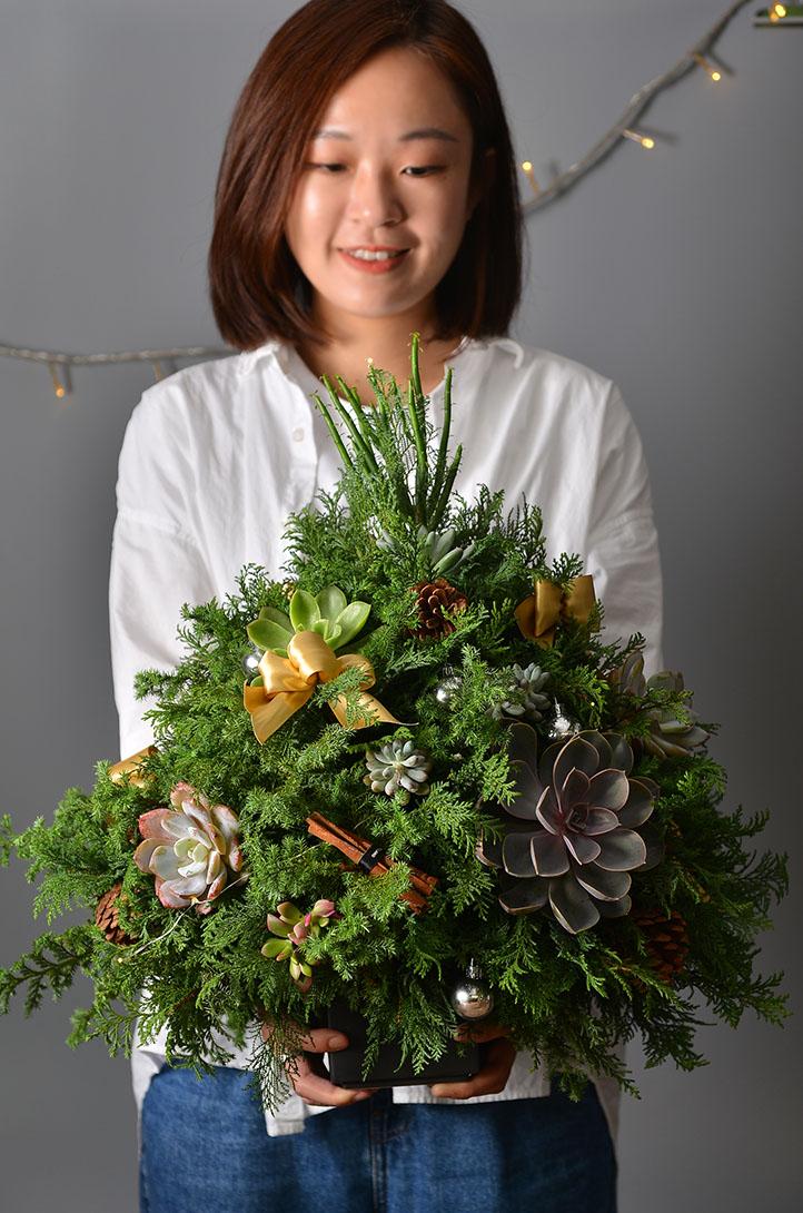 聖誕樹送禮推薦
