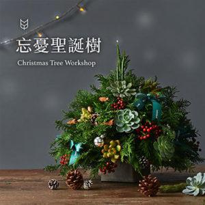 [ 多肉花藝 ] 忘憂聖誕樹 400X400