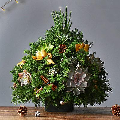 忘憂聖誕樹(大)