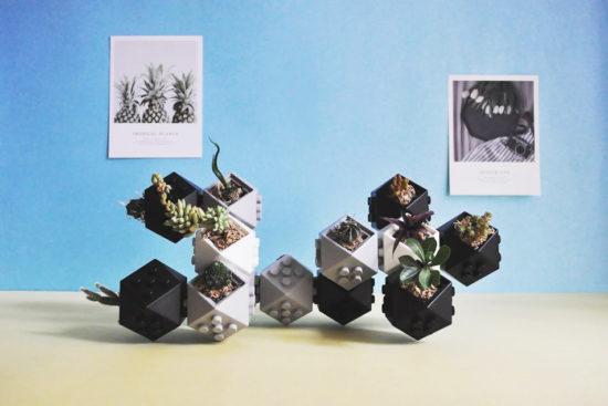 有趣的植物盆栽,台灣設計 - 由你盒子
