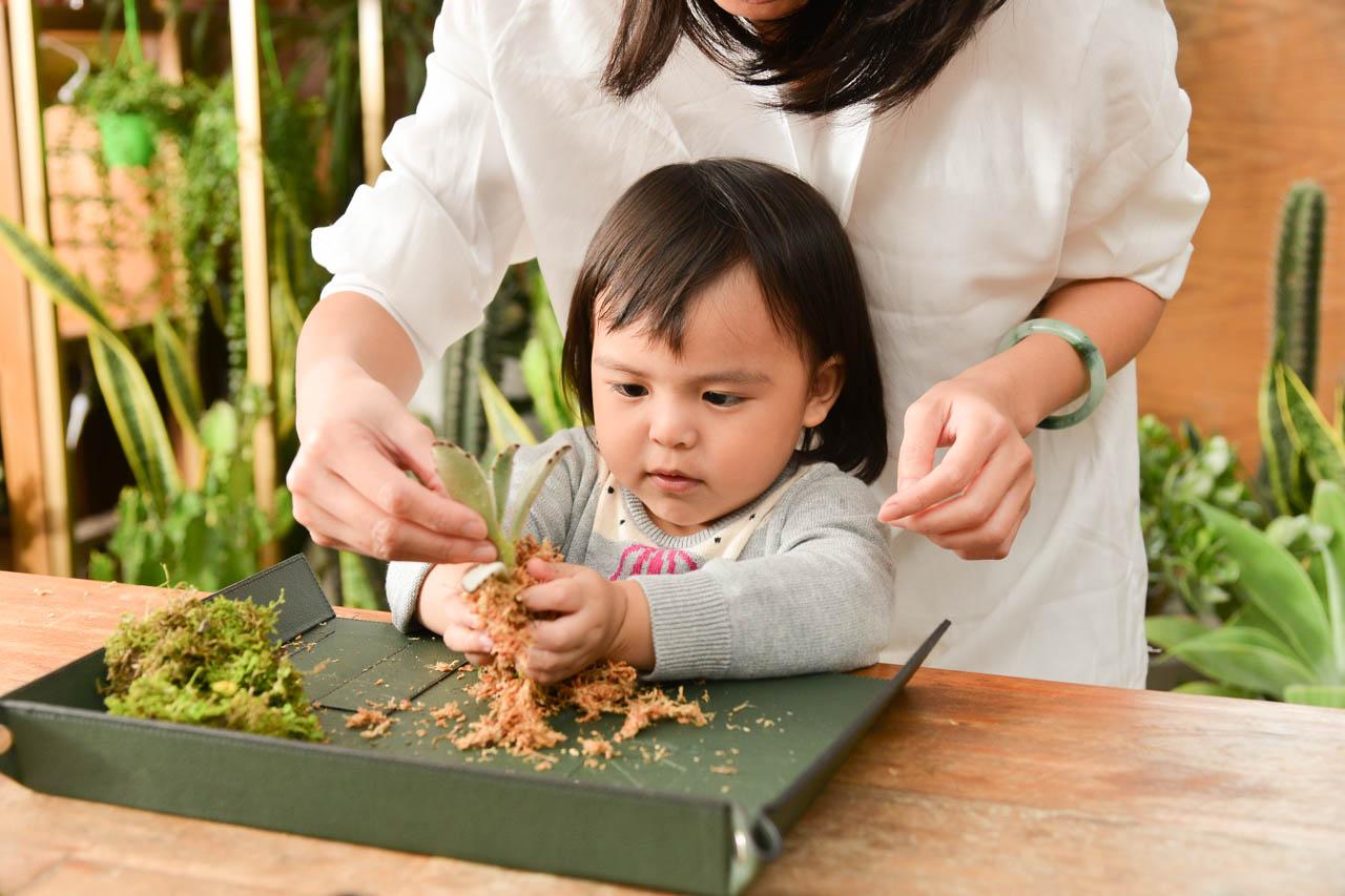 孩子與水苔