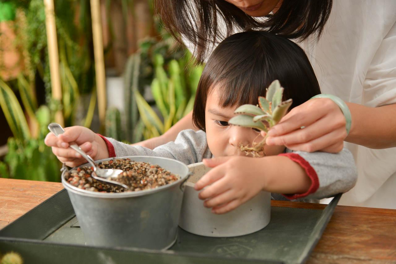 台北植栽課