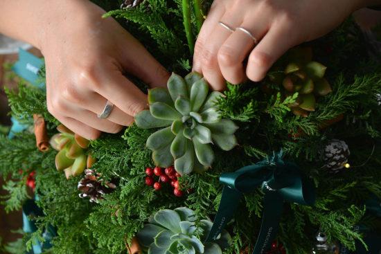 植物聖誕樹2021