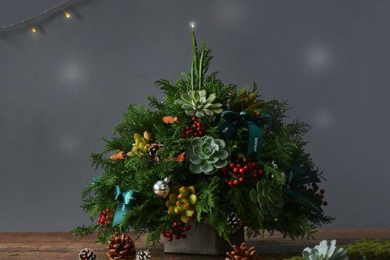 冬天聖誕樹