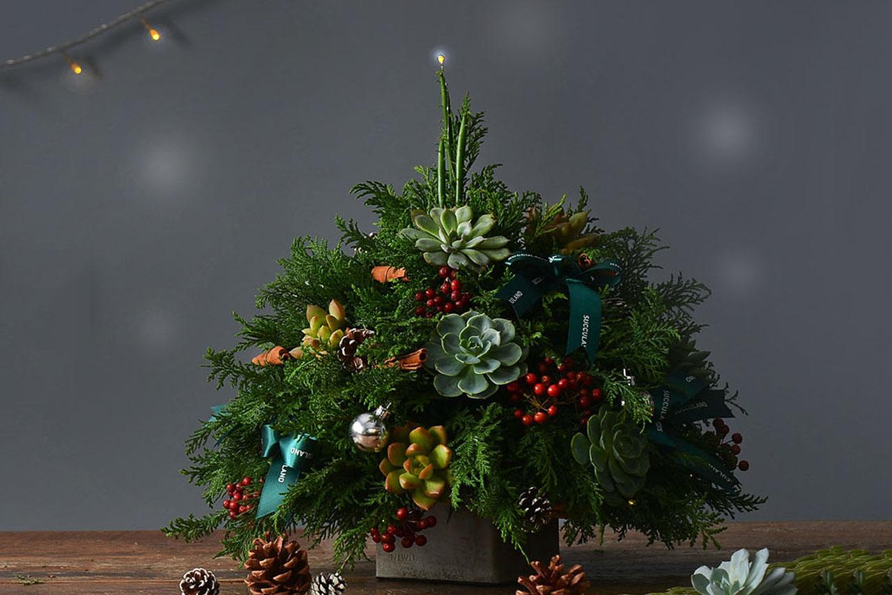 christmas tree for sell