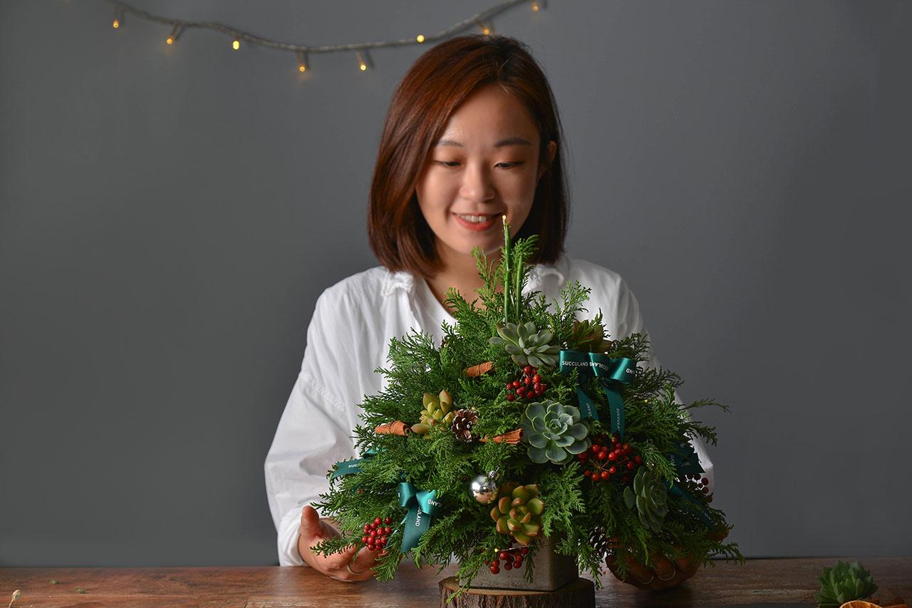 多肉聖誕樹
